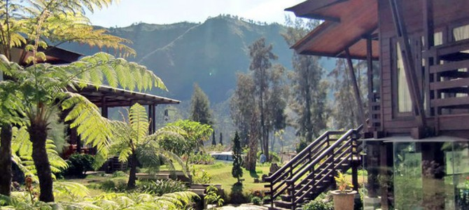 Jiwa Jawa Resort, Bromo (formerly Java Banana Bromo)
