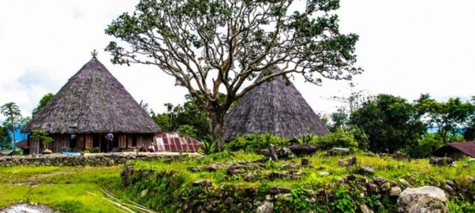 Traditional Village of Compang Ruteng, Flores