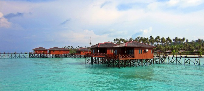 Derawan islands: a blissful aquatic life