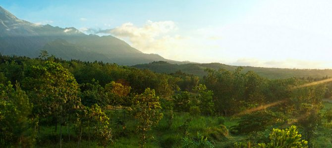 Charming Selo, Central Java