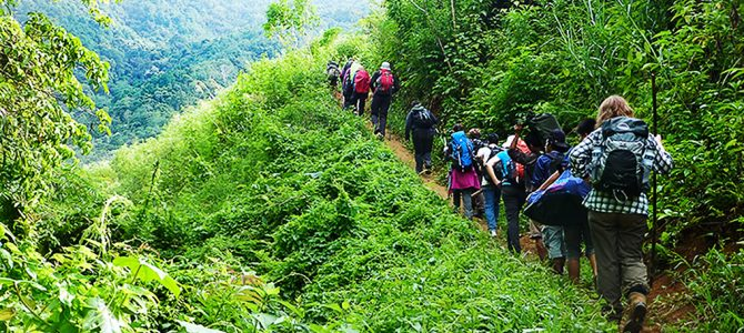 Deep forest trekking through the Heart of Borneo, Betung Kerihun National Park