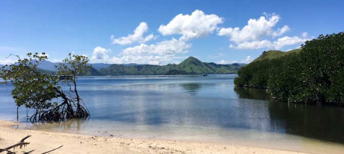 The Beauty of Atlas Pearls, Pungu Island – Flores